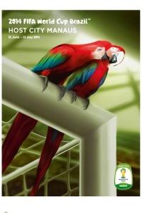 worldcup2014manaus-1